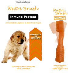 Nutri Brush Inmuno Protect