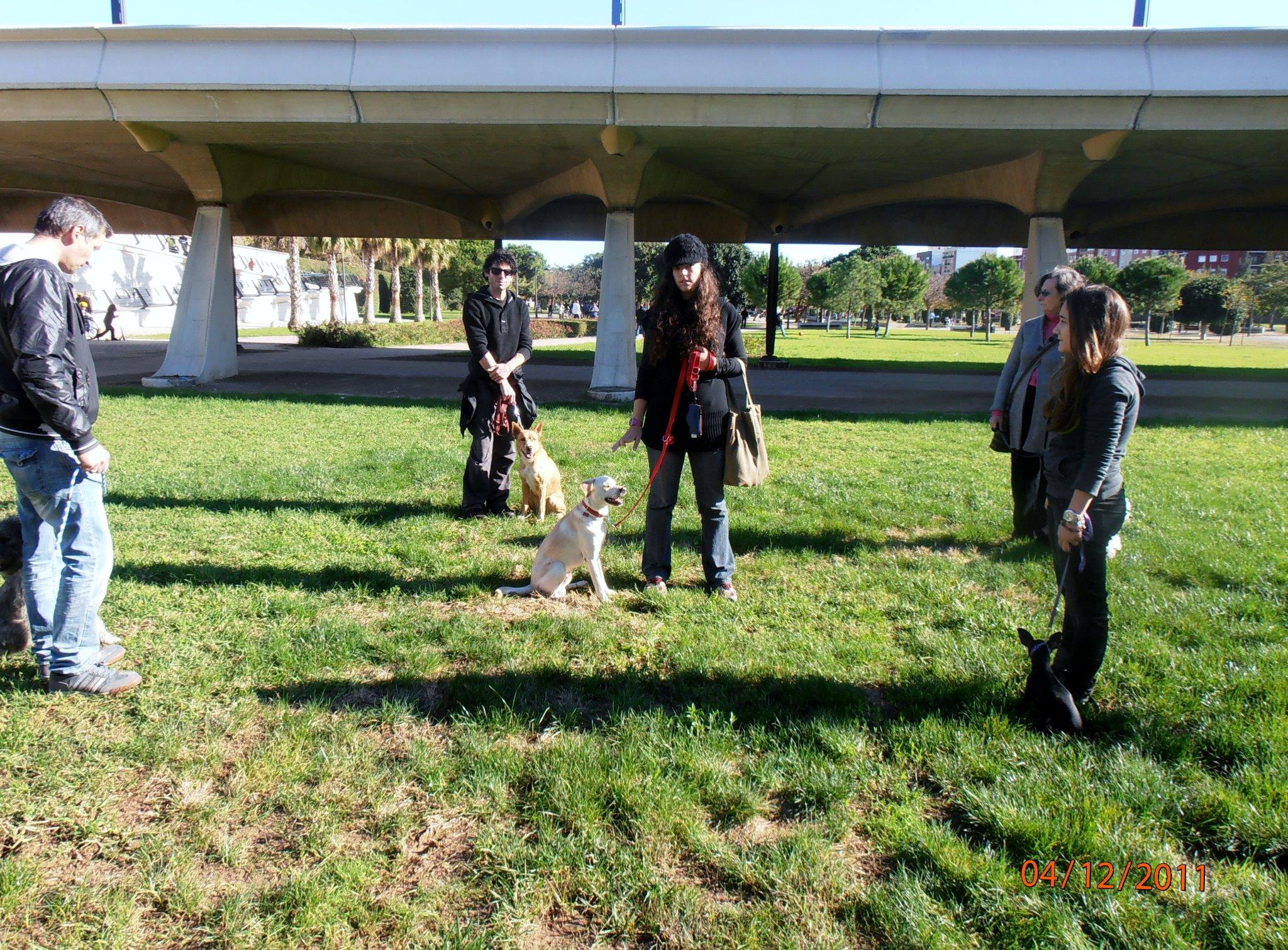Nacho impartiendo una clase de educación canina el 4/12/2011.