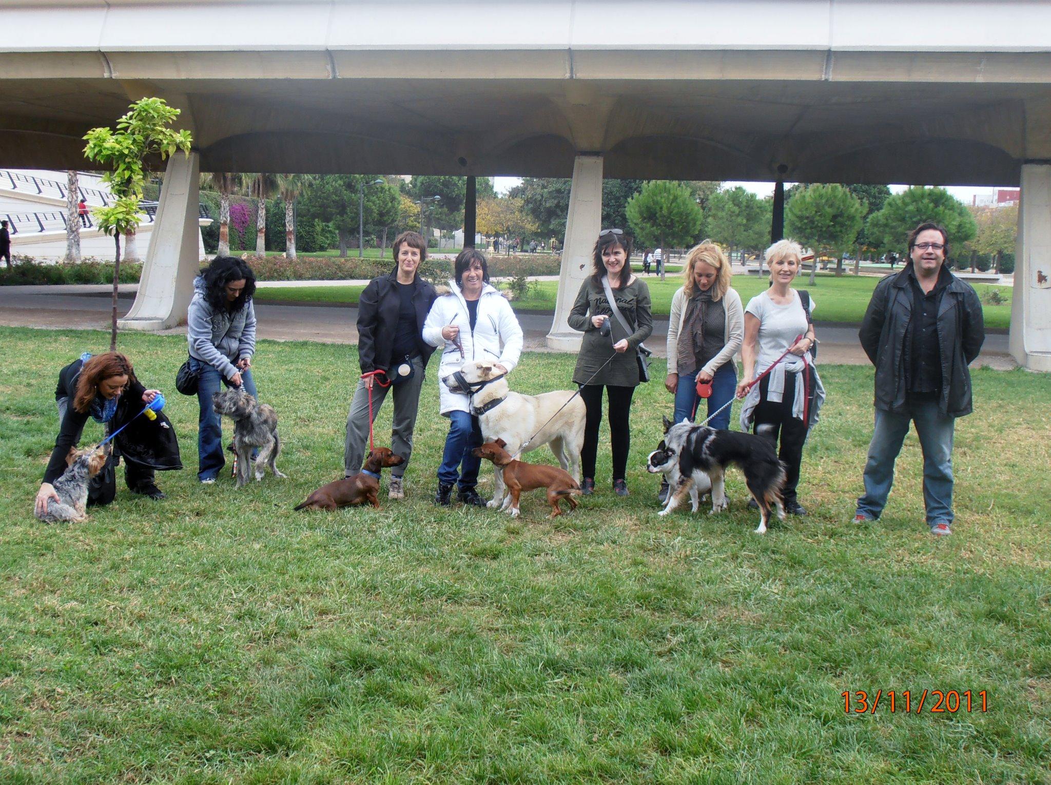 Nacho Roca, ensinistrador de gossos en València