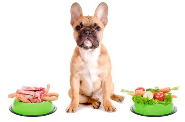 comida perros barf valencia mimomimascota