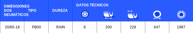 Neumático Michelin PB